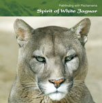 SS22 Spirit of White Jaguar