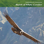 SS24 Spirit of White Condor